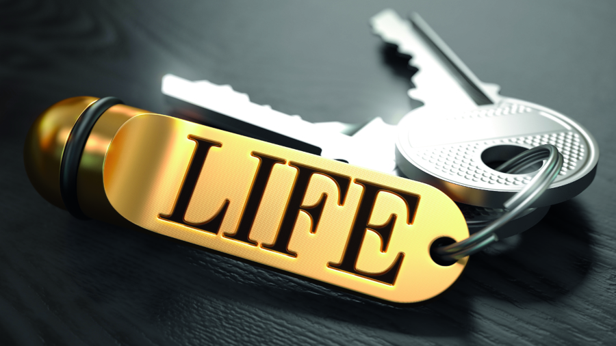 Keys and Golden Keyring with the Word Life over Black Wooden Table with Blur Effect.; Shutterstock ID 278953856; PO Number - Raise a BBC PO Using Vendor No. 1150465: -; Employee Email: -